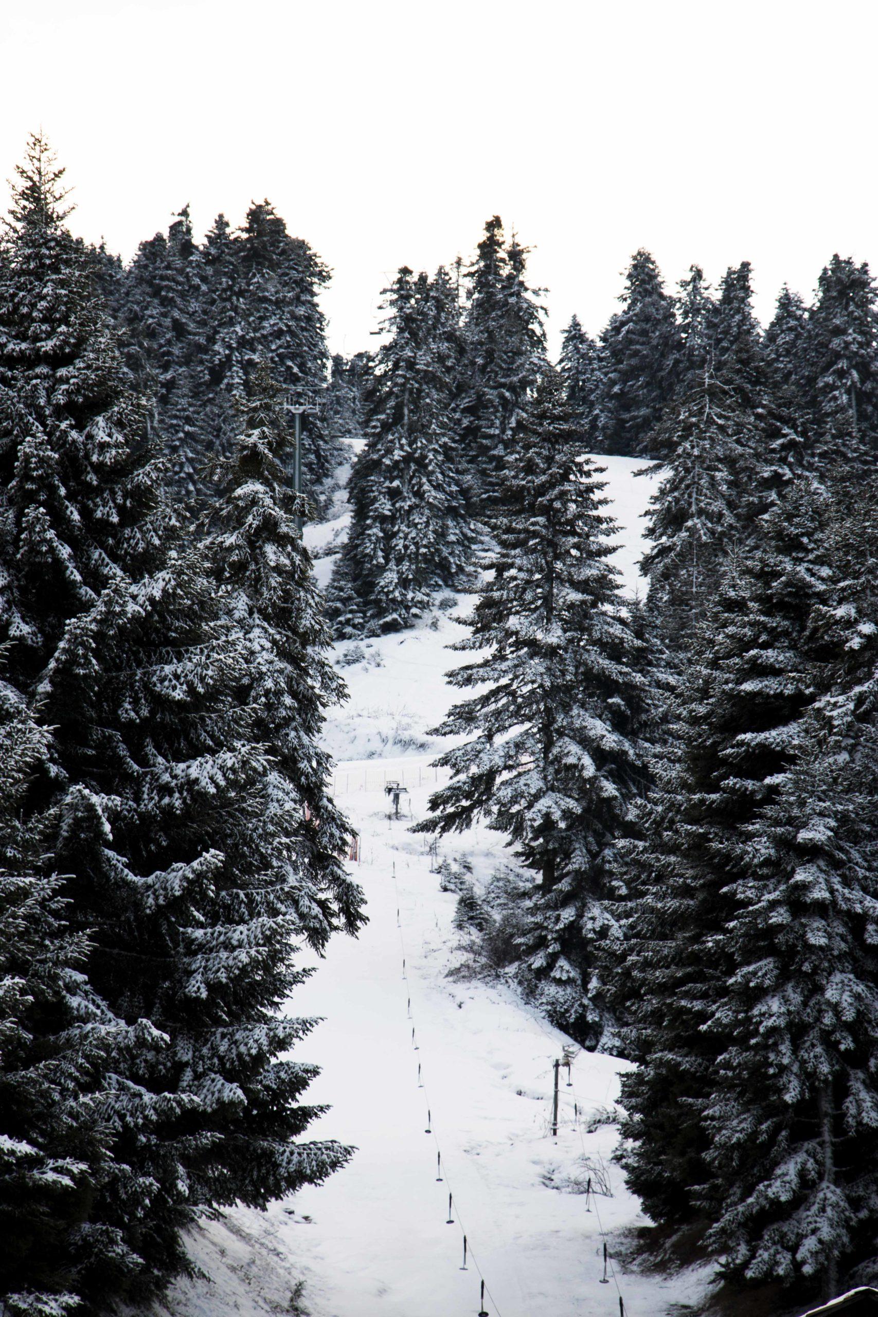 Χιονοδρομικό Περτουλίου Τρικάλων 1